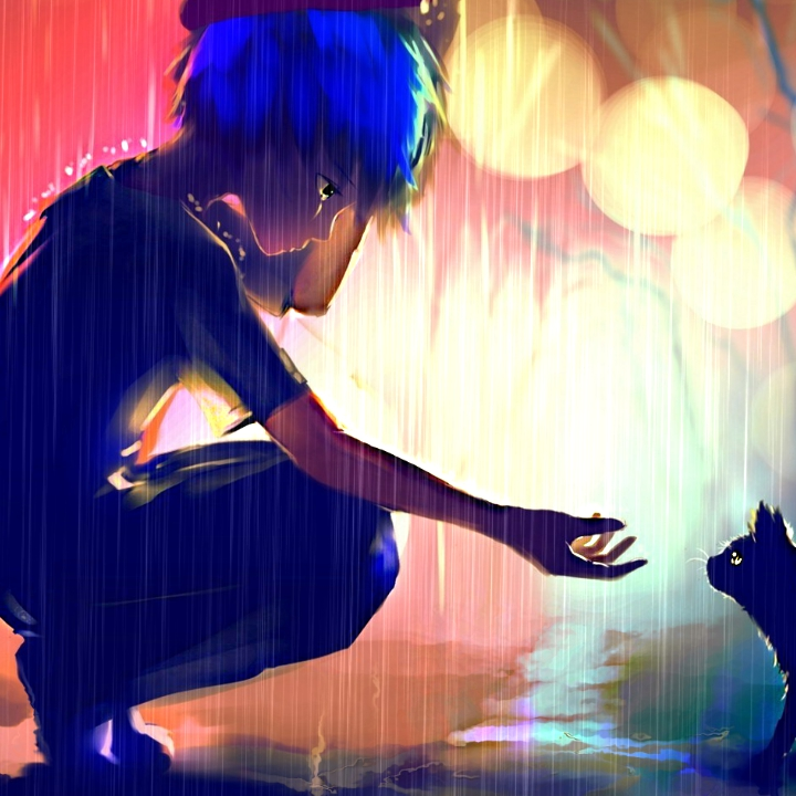 Anime Boy And Cat Wallpaper Amazing Wallpaper Hd Library