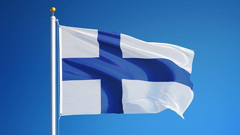 Свиньей, картинки финляндия флаг